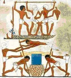 Wijnbouw Egypte